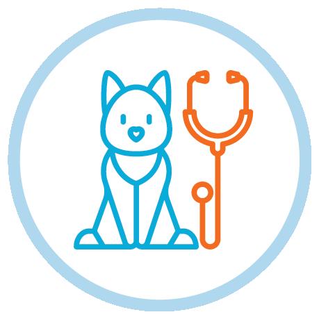palliative care for dogs