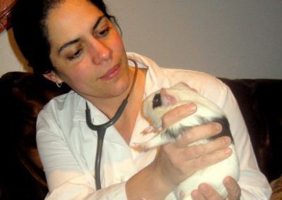 Dr Lisa Aumiller and Guinea pig