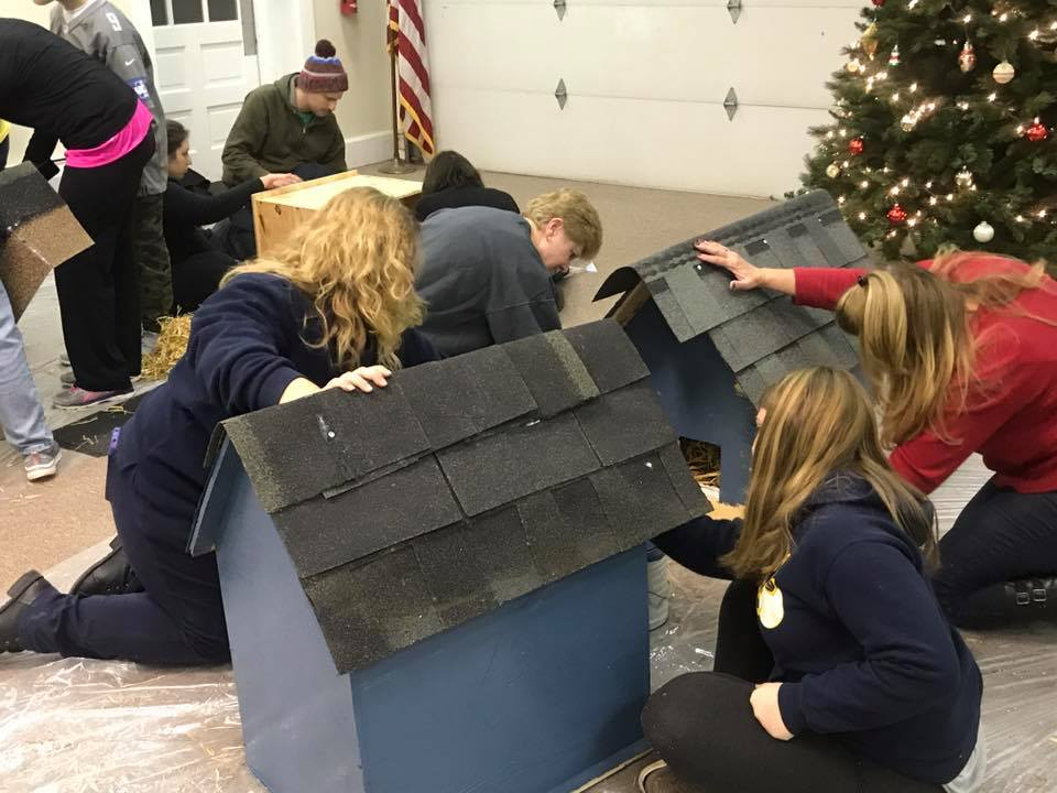 HousePaws Homeless Cat House Build Event