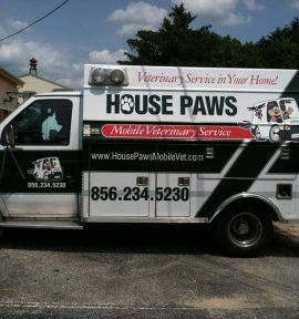 The Green Hornet pet ambulance