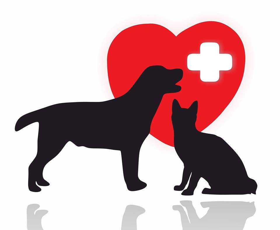 Pet CPR Seminar!
