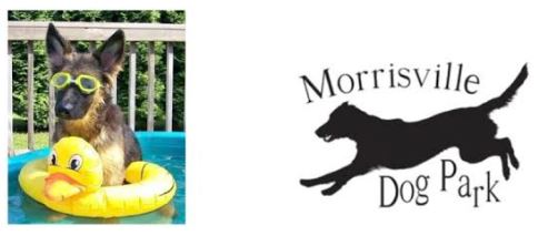 Pool Party at Morrisville Dog Park