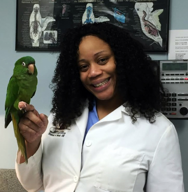 Dr Sharonda M Meade with a sugar glider patient