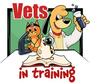 Vets In Training