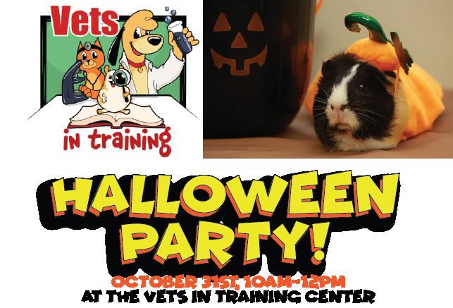 Halloween Party at VIT!